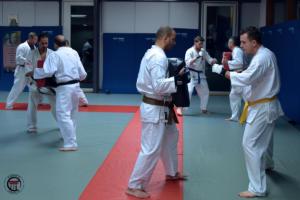 Stage Karaté kyokushinkai avec Tony Lingelser 6e Dan