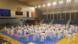 Stage Wado Ryu