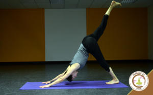 Nathalie Sonrier Professeur de Yoga | Maître Reiki